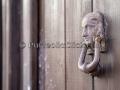 Autunno a Serdiana 2014 - 9 Novembre 2014 - ParteollaClick