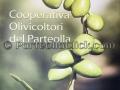 Dolia è - Dolianova - 7 Ottobre 2018 - ParteollaClick
