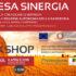 Presentazione progetto Impresa Sinergia con l'Unione dei Comuni del Parteolla e Basso Campidano - Comune di Dolianova - 11 Aprile 2018 - ParteollaClick