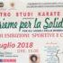 Banner 16ª edizione di Insieme per la Solidarietà - Settimo San Pietro - 6 Luglio 2018 - ParteollaClick