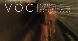 Banner VOCI, spettacolo teatrale contro la violenza sulle donne - Spazio Multifunzionale Scuole Medie, Serdiana - Domenica 25 Novembre 2018 - ParteollaClick