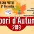 Banner Sapori d'Autunno 2019 - Settimo San Pietro - Domenica 1 Dicembre 2019 - ParteollaClick